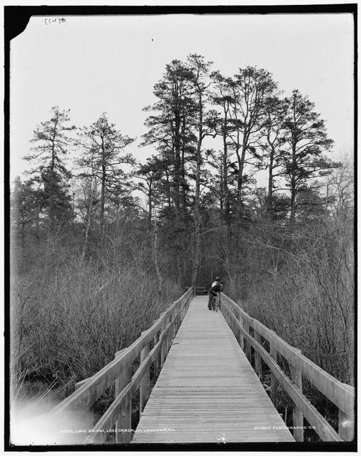 Long bridge, Lake Carsaljo [sic], Lakewood, N.J.