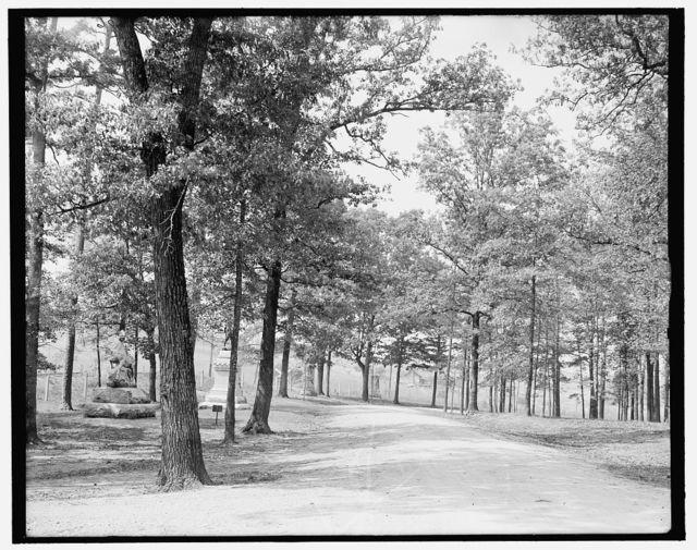 [Looking towards Bloody Pond, Chickamauga, Ga.]