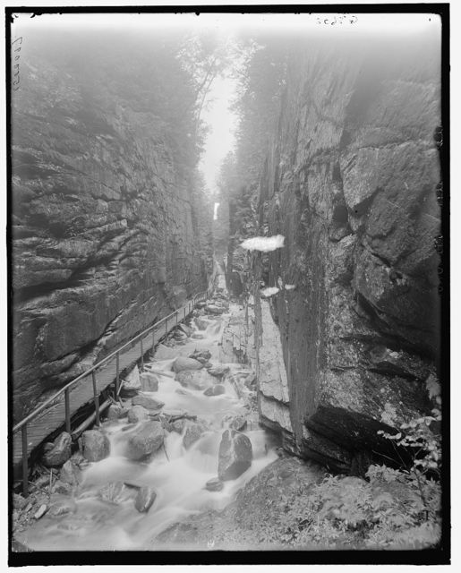 [Looking up the flume, Franconia Notch, White Mts., N.H.]