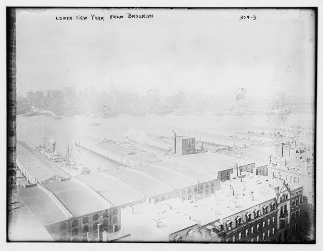 Lower N.Y. from Brooklyn