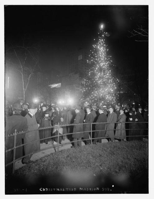 Madison Sq. Xmas Tree
