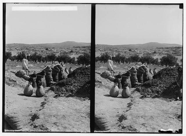 Making gunpowder at Beit Jibrin. Obtaining liquid for gunpowder