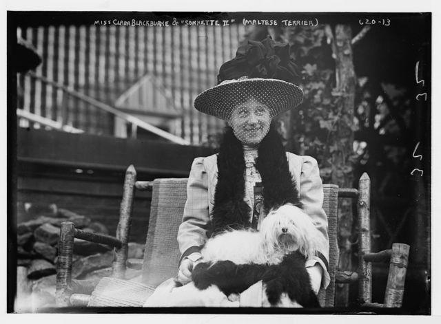 """Miss Clara Blackburne seated with her Maltese Terrier, """"Sonnette II"""""""