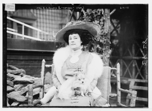 """Mrs. E.S. Allard seated with Pomeranian dog (""""Tiptoes"""") on lap"""