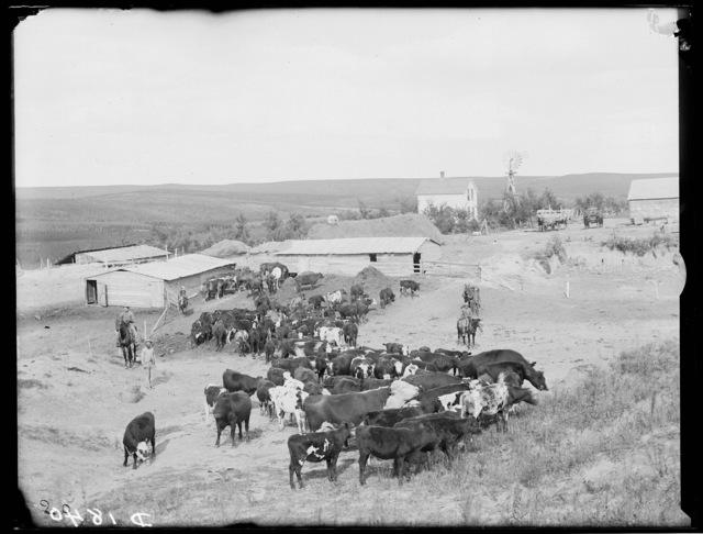 Near the Kennedy Ranch in Cherry County, Nebraska.