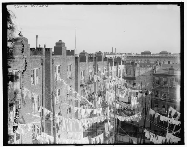 [New York, N.Y., yard of tenement]