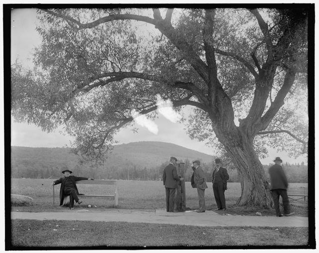 [Old penstock, Turner's spring, Mt. Agassiz, Bethlehem, N.H.]