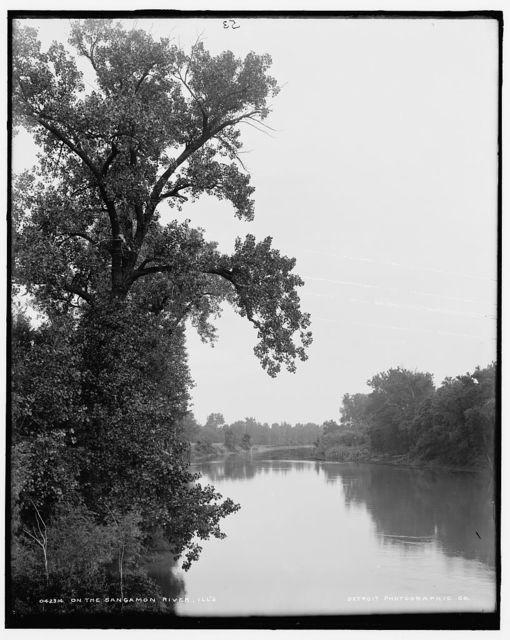 On the Sangamon River, Ill's.