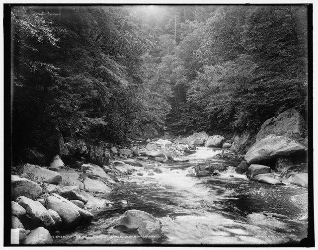 Outlet of Clarendon Gorge, Green Mountains