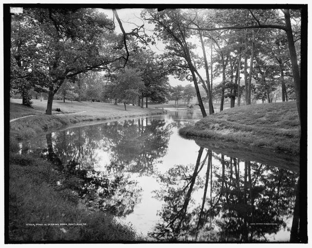 Pond in Deering Park, Portland, Me.