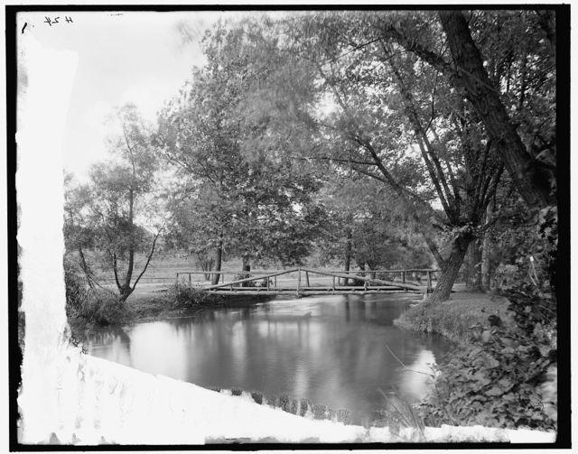 [Rustic bridge in park, Ann Arbor, Mich.]