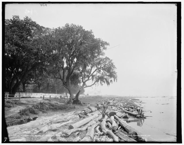 Shore at Frascati, Mobile, Ala., The