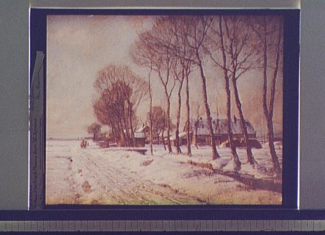 Snow clad fields in morning light
