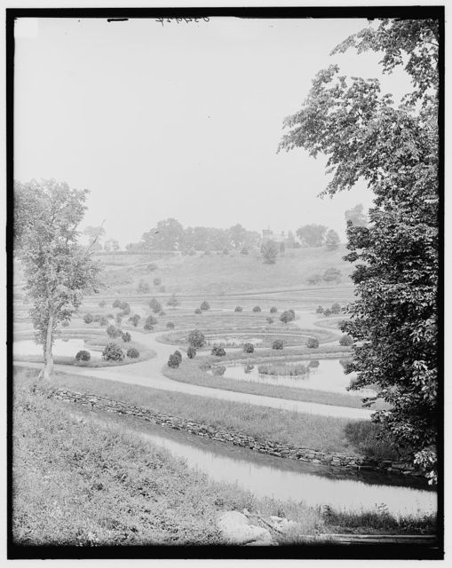 [Springfield, Mass., lily pond, Forest Park]