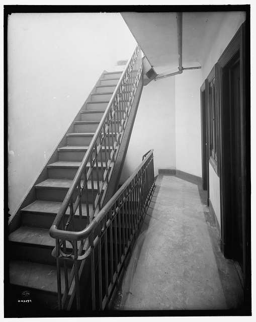 [Stairway and hall, tenement, New York City]