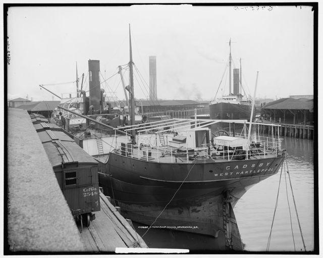 Steamship docks, Savannah, Ga.