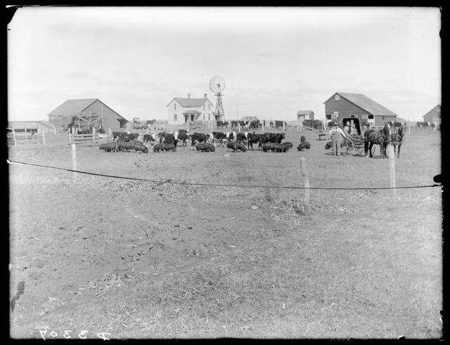 Stock ranch at Wood Lake, Cherry County, Nebraska.