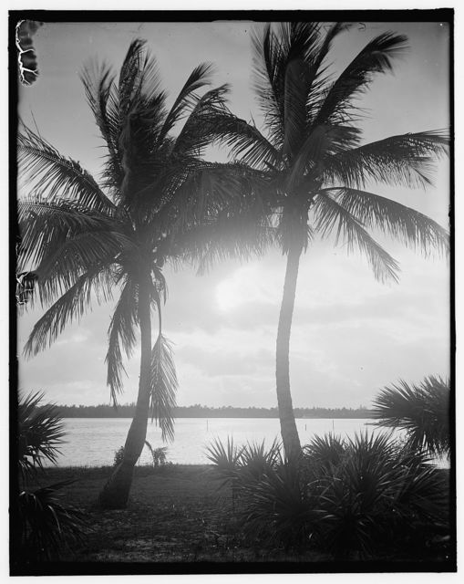[Sunset on Lake Worth, Palm Beach, Fla.]