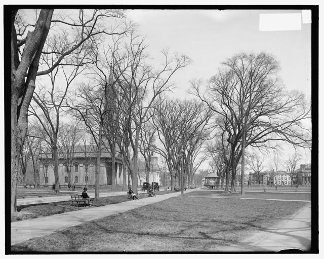 [Temple Street and churches on the Green, New Haven, Conn.]