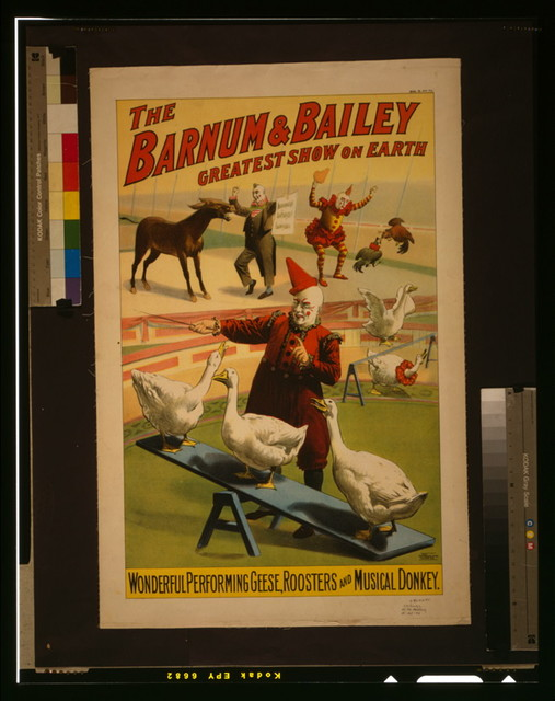 The Barnum & Bailey greatest show on earth. Wonderful performing geese, roosters and musical donkey / Strobridge Litho. Co., Cincinnati & New York.