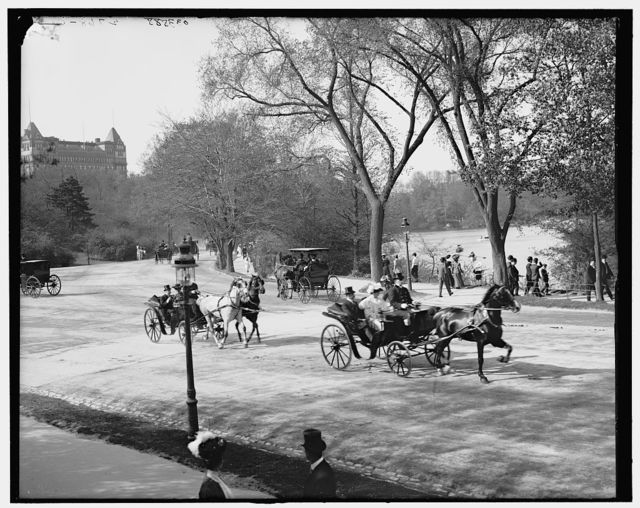 [The Driveway, Central Park, New York City]