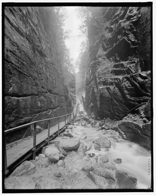 [The Flume, Franconia Notch, White Mts., N.H.]