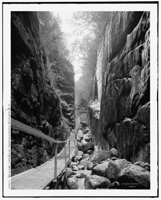 The Flume, looking up, Franconia Notch, White Mts., N.H.