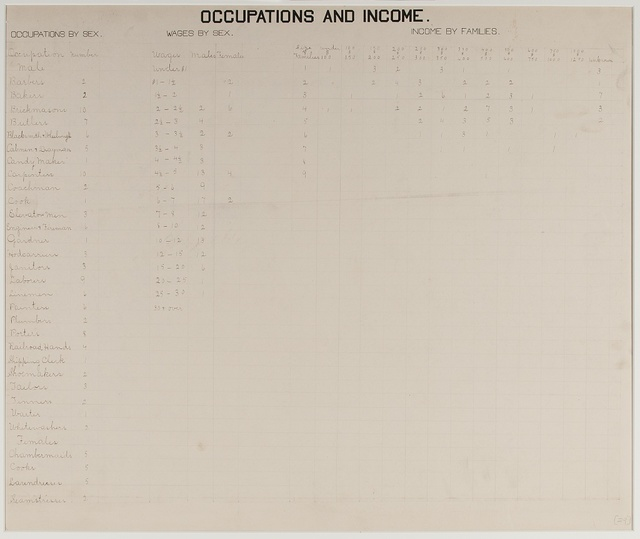 [The Georgia Negro] Occupations and income.