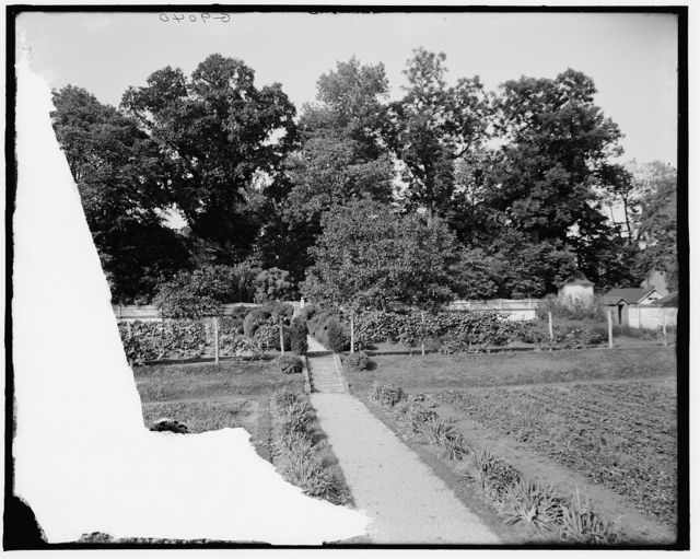 [The Kitchen garden, Mt. Vernon, Va.]