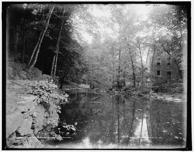 The Old mill, Bronx River, Bronx Park, New York