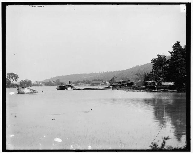 [The Steamboat graveyard, Lake George, N.Y.]