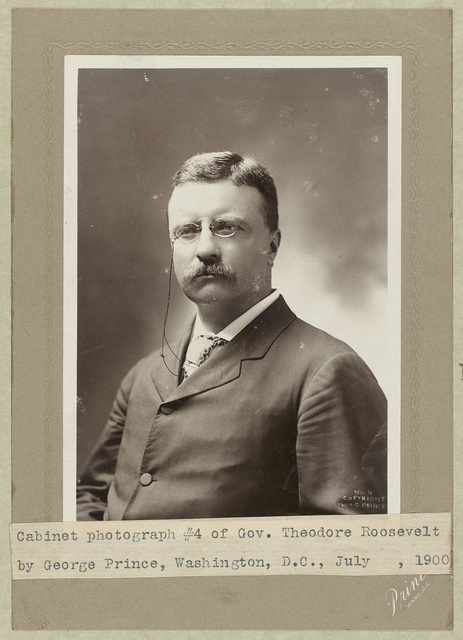 [Theodore Roosevelt, half-length portrait, facing left]