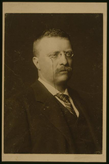 Theodore Roosevelt, No. 2