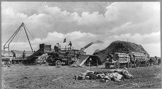 Threshing machine in operation, Ventura, California