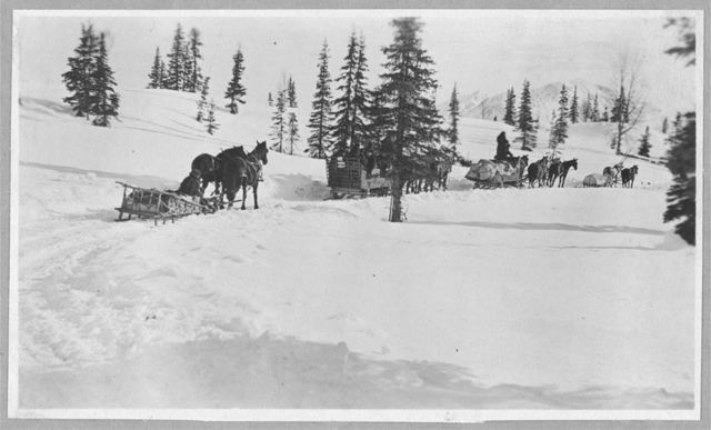 Transportation by horses and sleighs