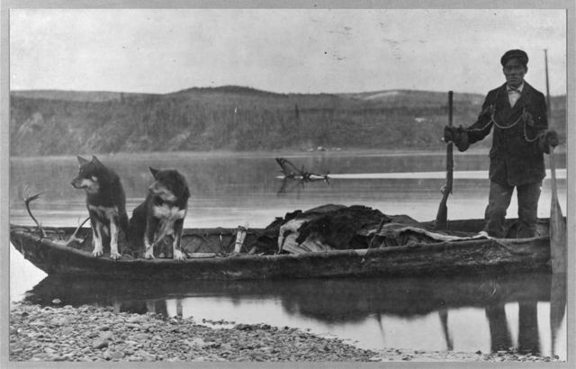 Trapper with hides and dogs in canoe