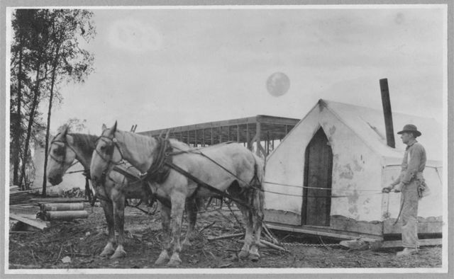 [Two horses pulling building]