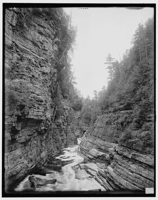 [Up from Hyde's Cave, Ausable Chasm, N.Y.]