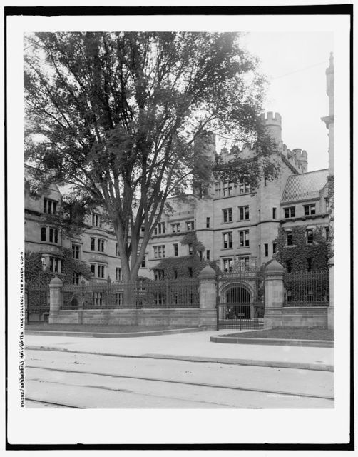 Vanderbilt Hall gates, Yale College, New Haven, Conn.