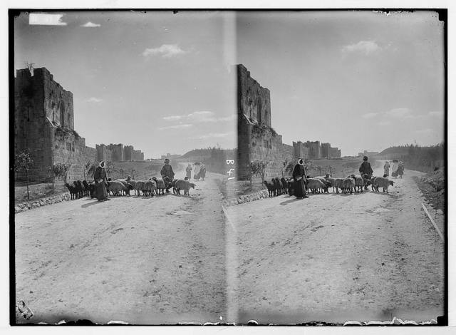 Various views of the city wall [Jerusalem]. North wall and Gordon's Calvary.