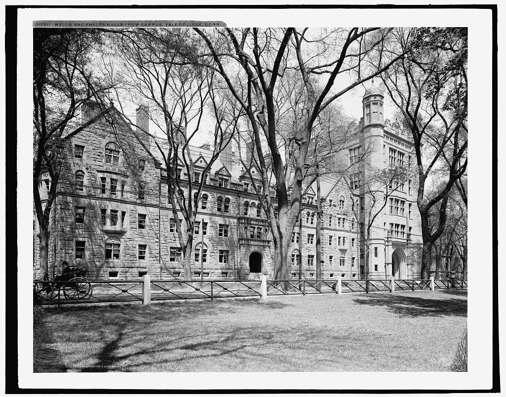 Welch and Phelps halls from campus, Yale College, Conn.