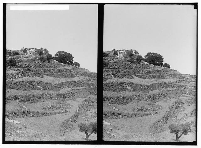 Weli of Budrieh at Sherafat and the preparing of a sacrifice. General view of the weli.
