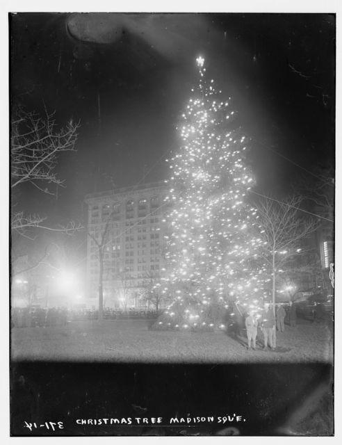 Xmas Tree, Madison Sq.