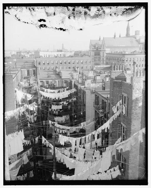 [Yard of tenement, New York, N.Y.]