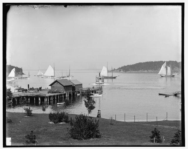 Bar Harbor, Mt. [Mount] Desert Island, Me., the harbor from Newport House