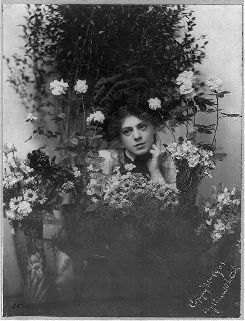 [Ethel Barrymore, 1879-1959, head and shoulders portrait, left hand under chin, facing left, behind bouquets of flowers]