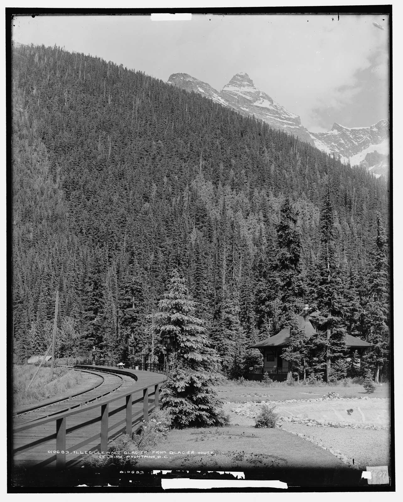 Illecillewaet Glacier from Glacier House, Selkirk Mountains, B.C