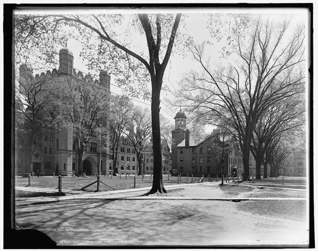 Phelps Halls and Lyceum from campus, Yale College