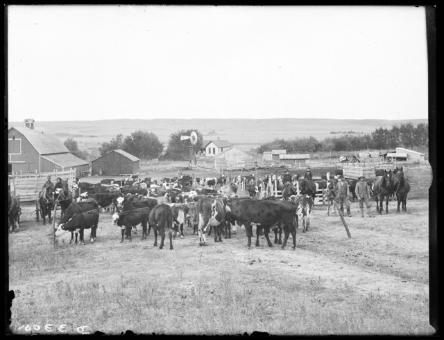 Stock ranch in Cherry County, 15 miles southwest of Ainsworth.