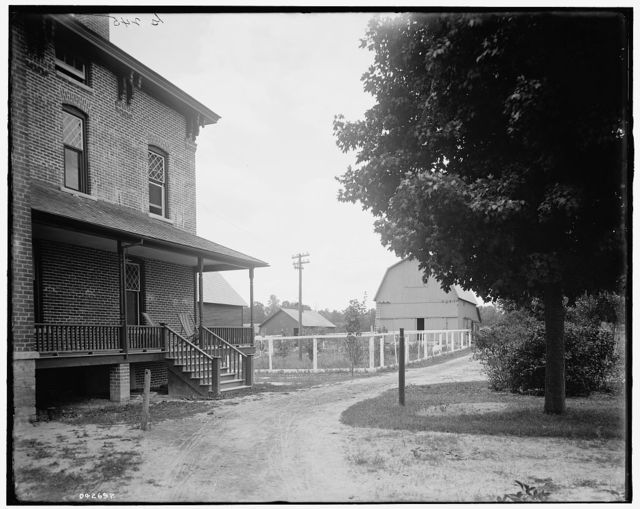 [The Firs, driveway to barn, New Baltimore, Mich.]